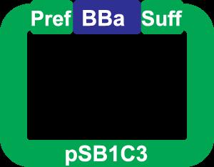 Help:Prefix-Suffix - parts.igem.org