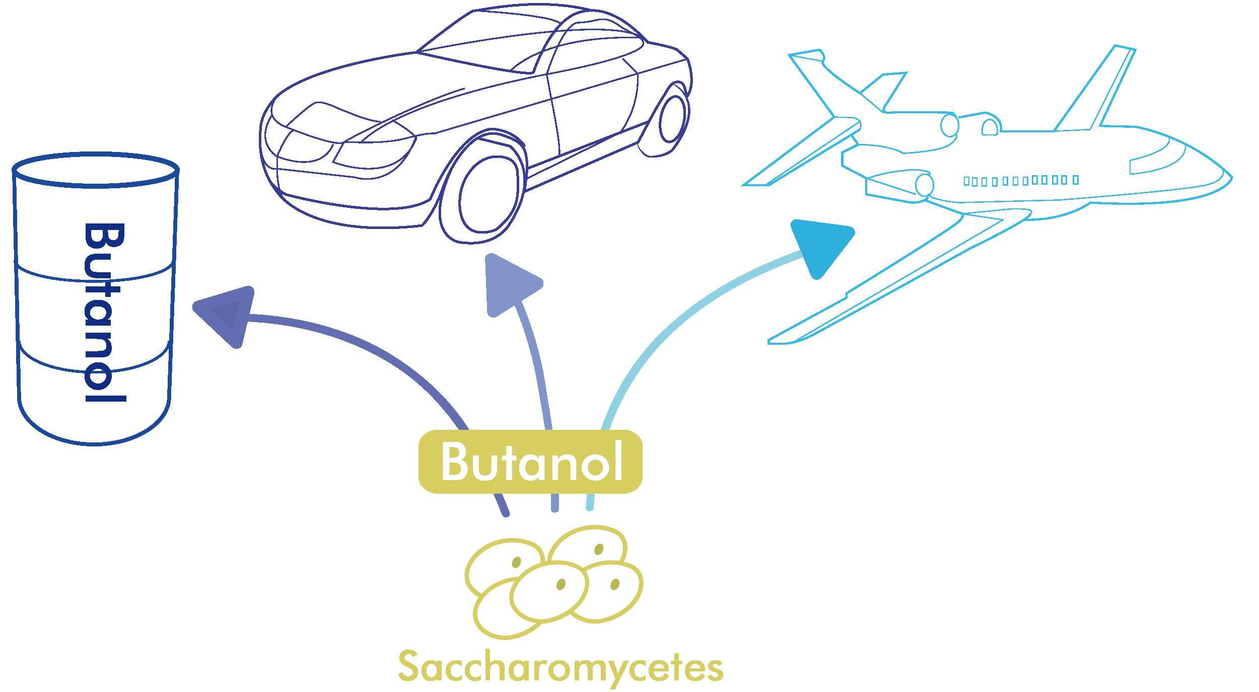 Biobutanol – Oakbio
