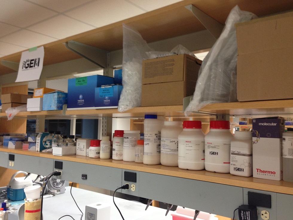 The Vanderbilt iGEM Lab