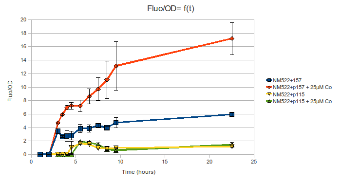 INSA-ENS_Prcn-Gfp_FluoDo%3Dft.png