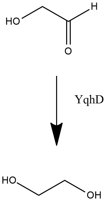 http://parts.igem.org/wiki/images/8/81/BBa_K1602013_image_1.png