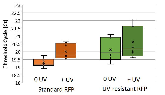 VU16_qPCR_RFPuv.png