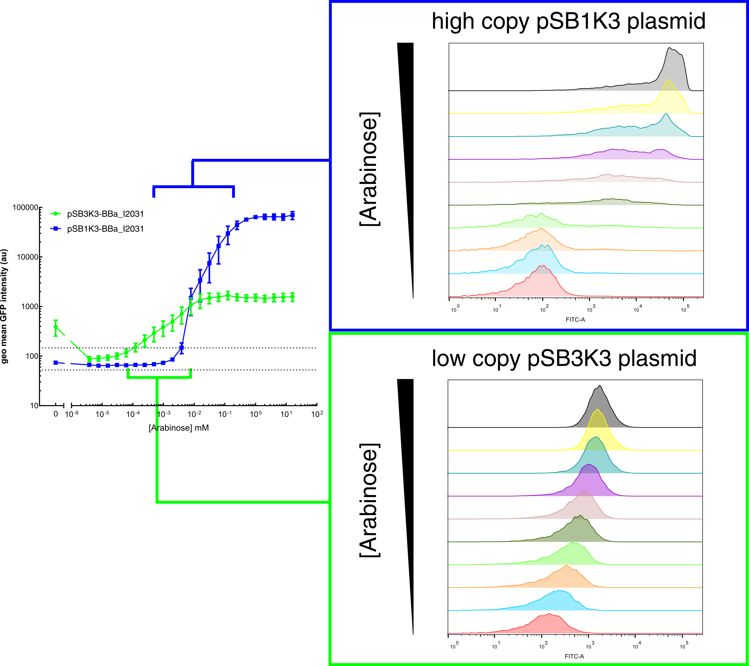 Histogram plots for sensing ranges of BBa_I0500 on high and low copy plasmid.