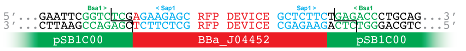 PSB1C00-J04452.png