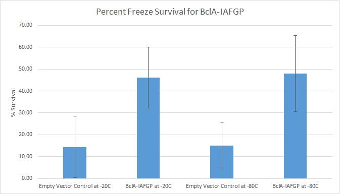 WPI_2015_BclA-IAFGP_Freeze.jpg