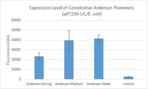 Expression Level for anderson-citrine (pKT230-Lic).jpg