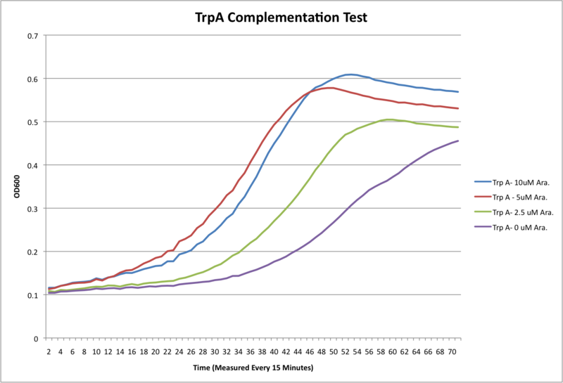 800px-TrpA_Complementation_Test_No_fluor.png