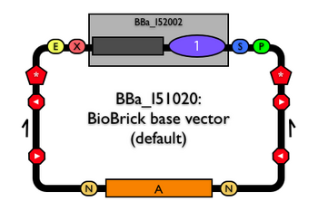 BBa I51020schematic.png