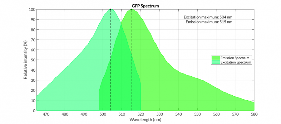 GFP spectra.