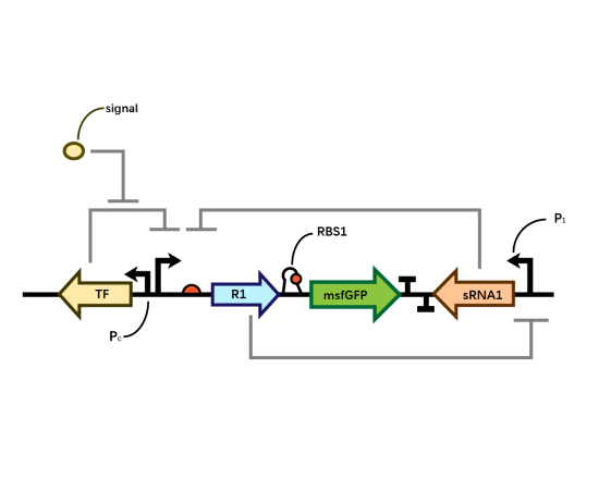 Single Layer of Bistable System