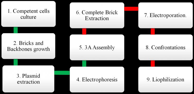 Diagram of parts
